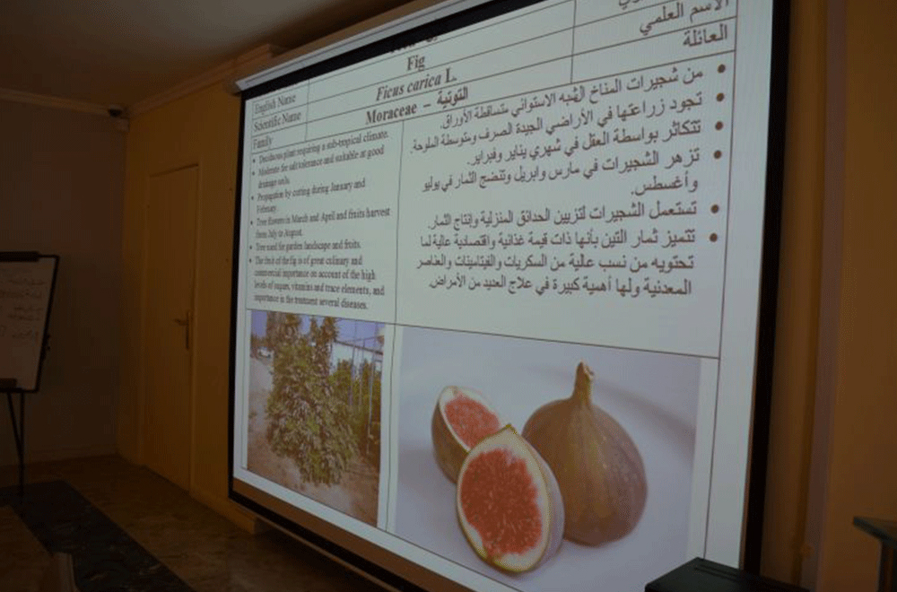 Fruit Trees PPT
