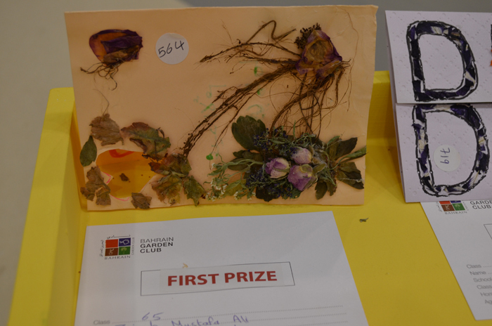 Young gardening competition