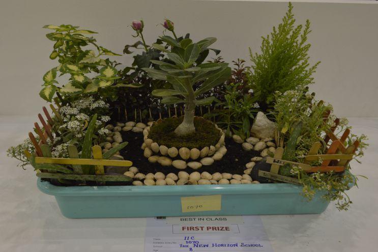 2017 Bahrain Annual Garden Show