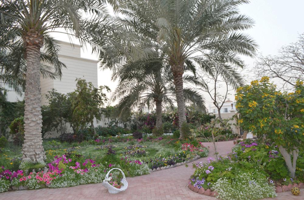 Bahrain Garden Club Member's Garden
