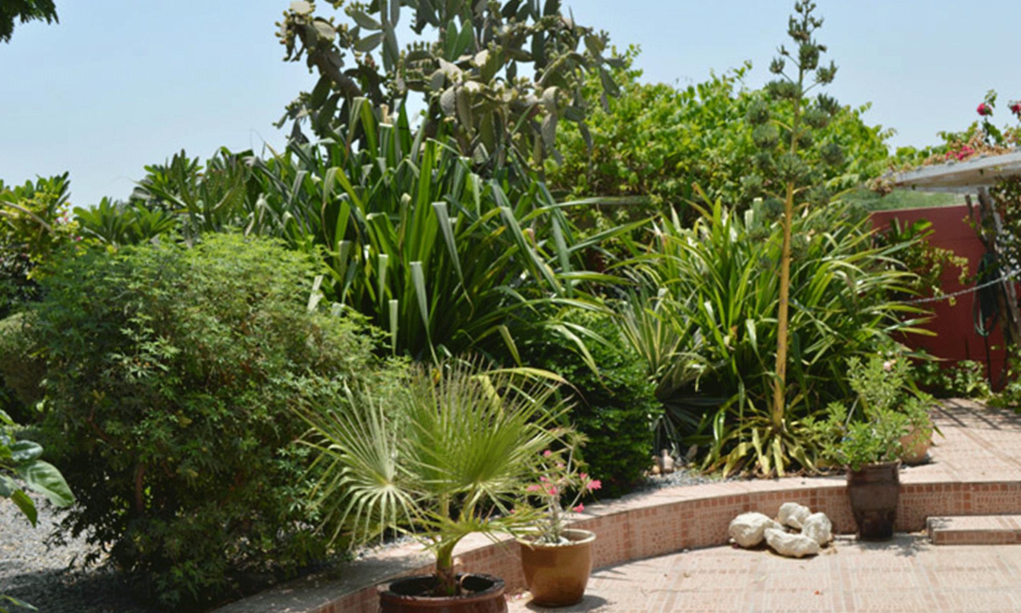 Club House Garden
