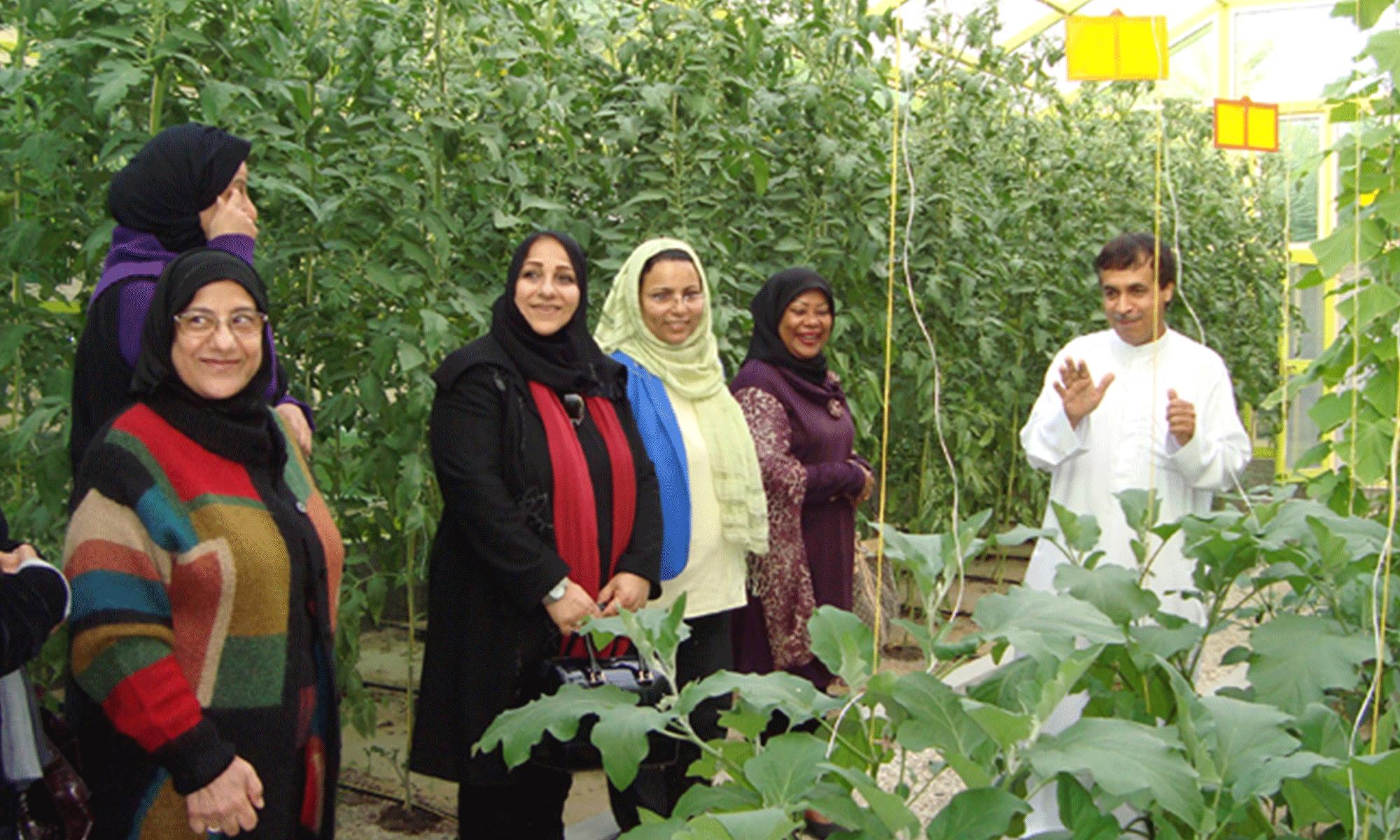 Farm Visit at Bahrain