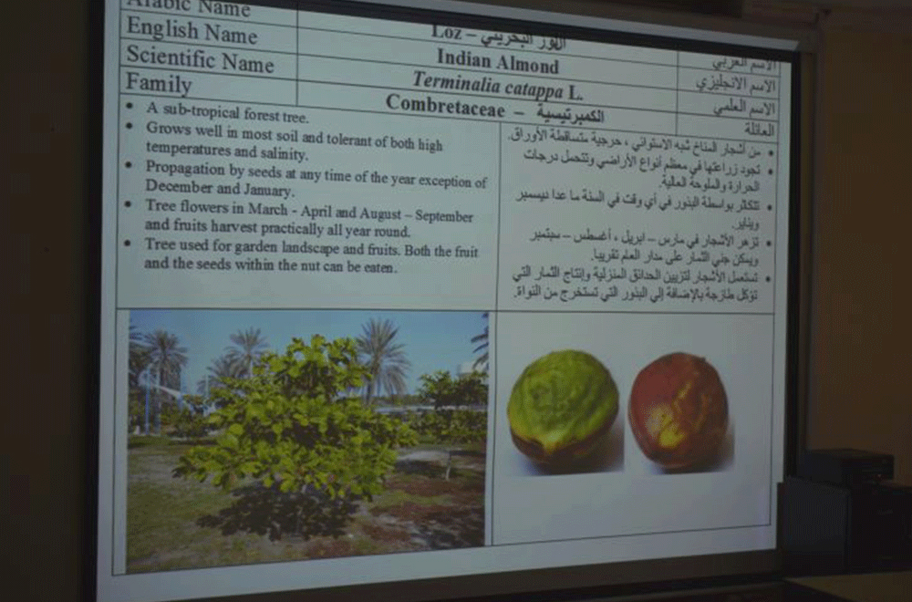 Fruit trees growth ppt